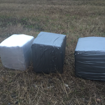 Cocaine worth $700k confiscated in Coast inspection stop