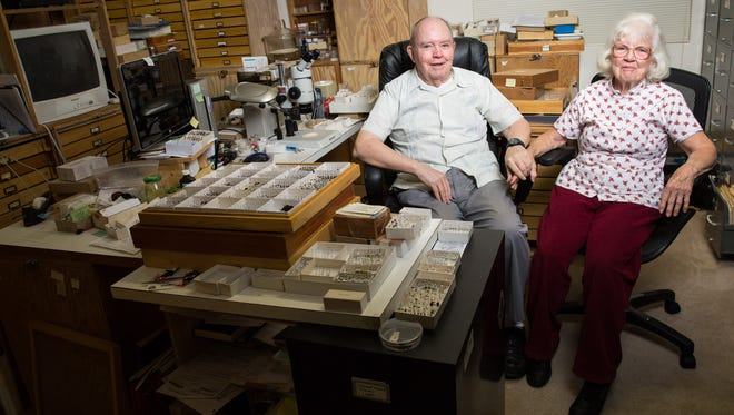 Charles and Lois O'Brien with part of their insect collection at their Green Valley home.