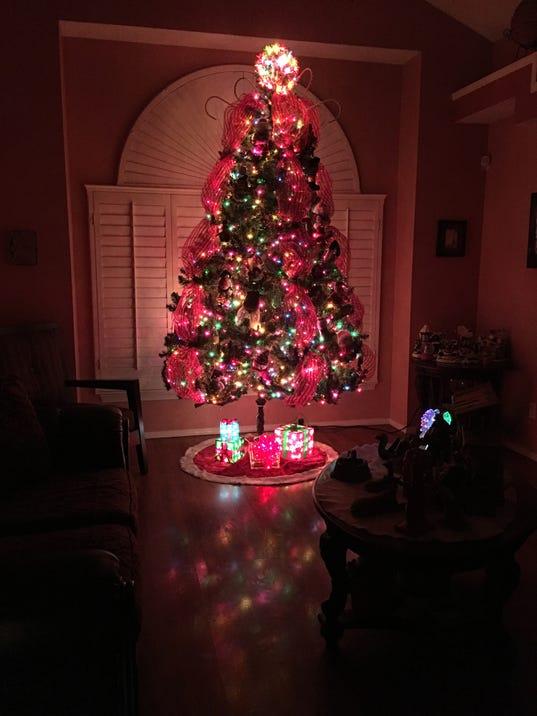Reader Christmas 2016