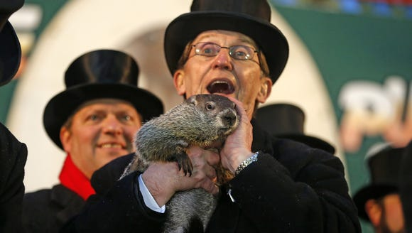 Punxsutawney Phil is held by Ron Ploucha after emerging