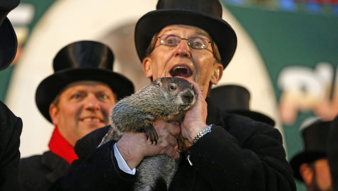 Punxsutawney Phil is held by Ron Ploucha after emerging from his burrow Sunday in Punxsutawney, Pa.   Gene J. Puskar/AP Punxsutawney Phil is held by Ron Ploucha after emerging from his burrow Sunday, Feb. 2, 2014, on Gobblers Knob in Punxsutawney, Pa., to see his shadow and forecast six more weeks of winter weather. The prediction this year fell on the same day as Super Bowl Sunday.  (AP Photo/Gene J. Puskar)