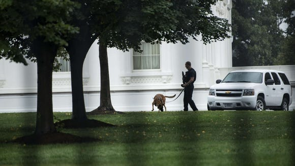 A Secret Service officer is seen with an attack dog