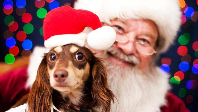 Get your pet's photo taken with Santa in metro Phoenix.
