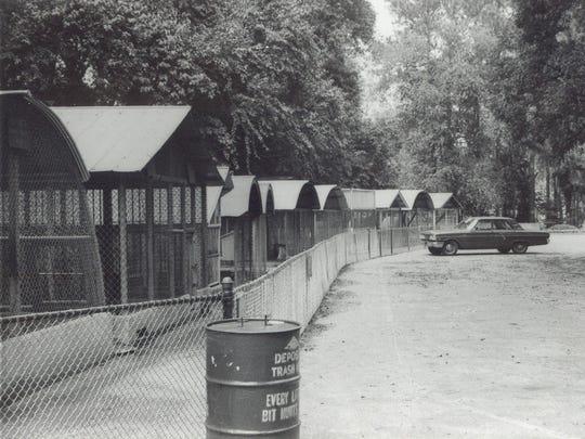 The Alexandria Zoo around 1960.