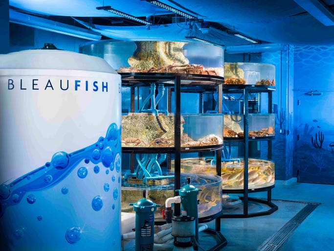 South Florida 39 S New Takes On Seafood Trend