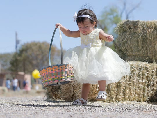 Easter egg hunts are the main feature of many fun Easter events this weekend.