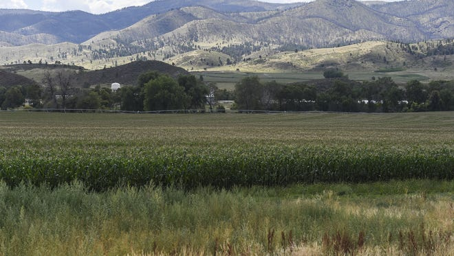 Glade Reservoir, the larger of two reservoirs planned for the Northern Integrated Supply Project, would sit outside the Poudre Canyon at the intersection of U.S. Highway 287 and Colorado Highway 14.