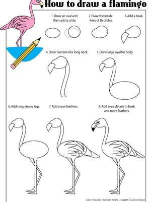 How-to-draw-a-flamingo