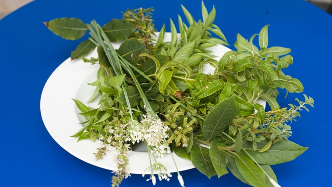 The Mediterranean diet is healthy, in part, because of the ingredients including fresh herbs.