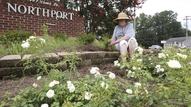 """Janelle Gray, a member of the Tuscaloosa-Northport Garden Club, weeds a planted area near the """"Welcome To Northport"""" sign across from Northport City Hall on U.S. Highway 82 on Thursday. Gray said members of the garden club maintain the area around the sign as a volunteer project to keep the city beautiful."""