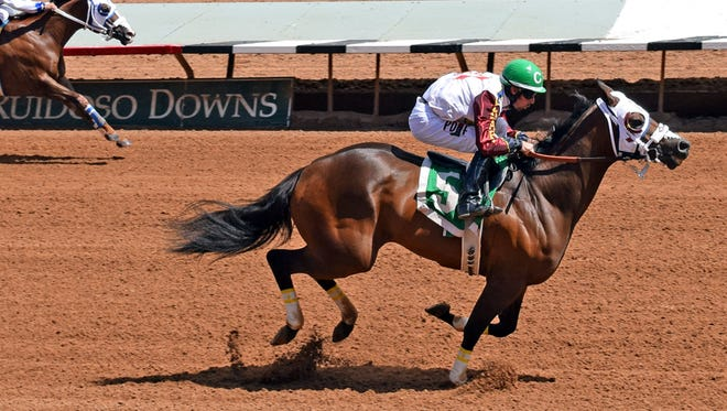 World champion Jessies First Down preparing for the Grade 1, $200,000 All American Gold Cup with this dominating win in a Ruidoso Downs' allowance race.