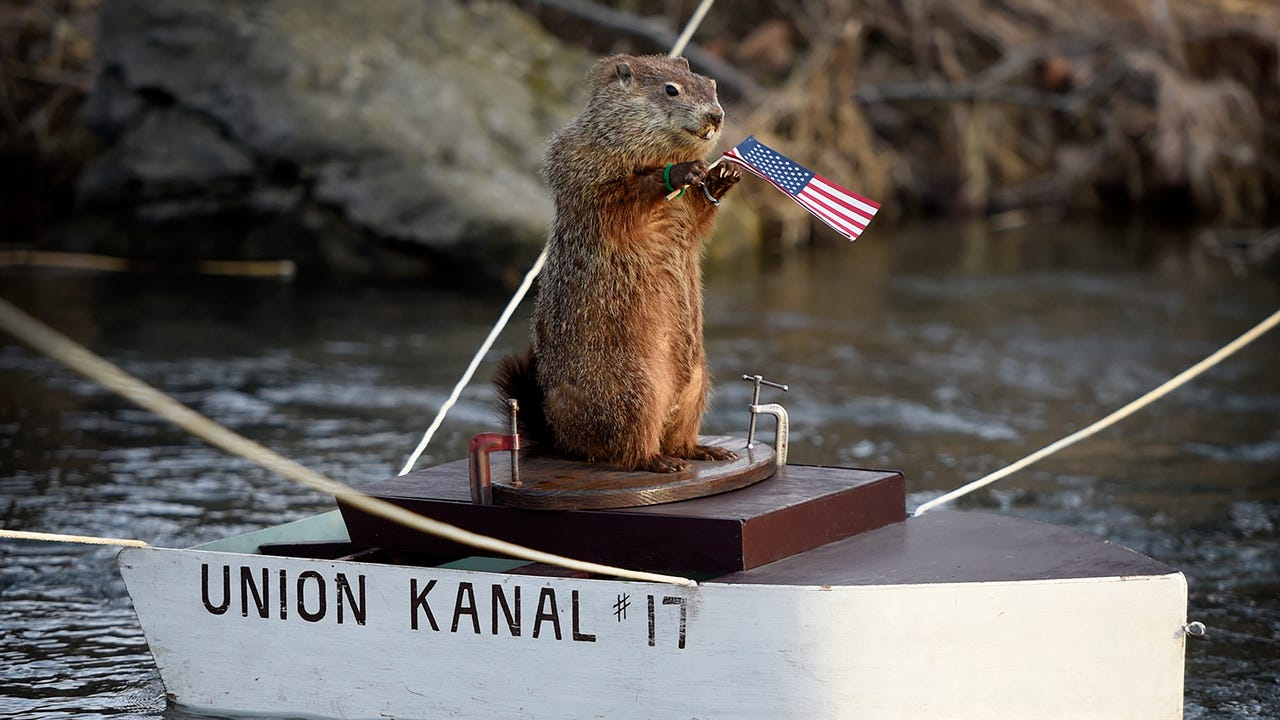 Since 1981 the Union Kanaal Grandsau Lodsch #17 of Eastern Lebanon County have asked Uni the groundhog to help prognosticate the start of Spring. At 8:00 a.m. Friday, Feb. 2, Uni came down the Tulpehocken Creek in Myerstown Recreation Park and saw his shadow, effectively predicting six more weeks of winter.