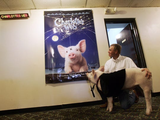 Wilbur the pig and owner John Batey pause to look at