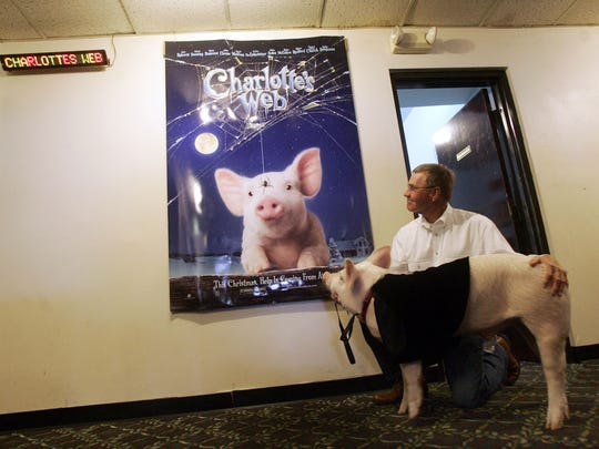 "Wilbur the pig and owner John Batey pause to look at a poster for the movie ""Charlotte's Web"" at a special showing of the film at Premiere 6 Theater in Jackson Heights Plaza, Dec. 21, 2006."