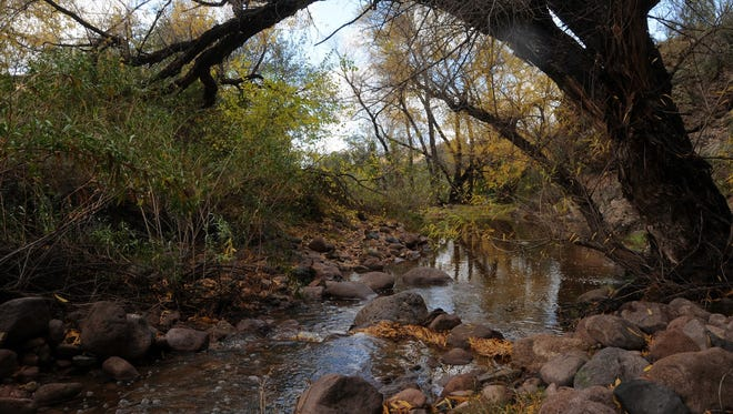 Hackberry Spring in the Superstition Wilderness is a shaded oasis.