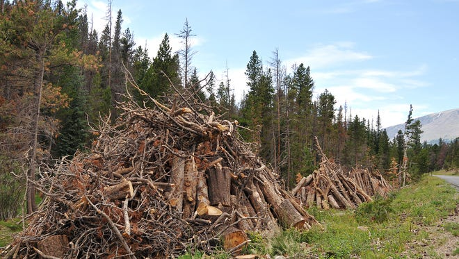 Piles of lumber from dead trees line the roadway in Rocky Mountain National Park on Thursday, July 19, 2012.