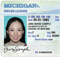 michigan sos lost drivers license