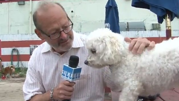 """Is it any wonder why """"Yappy Hour,"""" at the Wonder Bar in Asbury Park has become so popular?"""