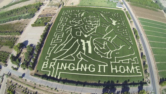 The 2014 Schnepf Farms celebrity corn maze features Larry Fitzgerald.