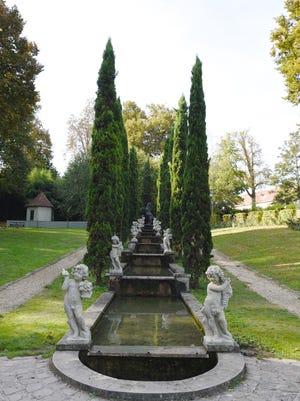 Italian cypress has a wonderful linear shape that adds drama to any garden.