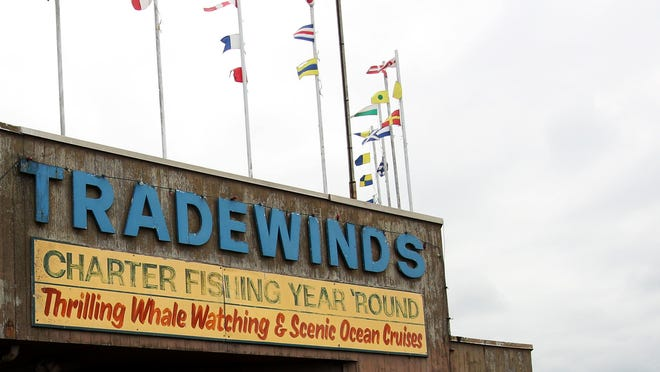 The owners and several skippers at Tradewinds of Depoe Bay, a fishing charter company pleaded guilty to charges involving a scam in which the charter charged customers  for daily fishing licenses but never bought the licenses from the Oregon Department of Fish and Wildlife.