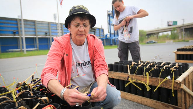 Cynthia Ferguson prepares for a fireworks show at Frawley Stadium on Friday. Ferguson works for the City of Wilmington, as a contractor for a Pennsylvania-based fireworks company and serves as the executive director of DeNORML.