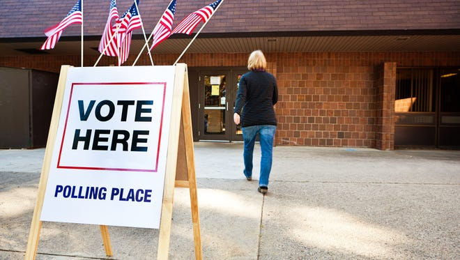 Michigan's nearly 7.4 million registered voters face important questions in next Tuesday's primary election.