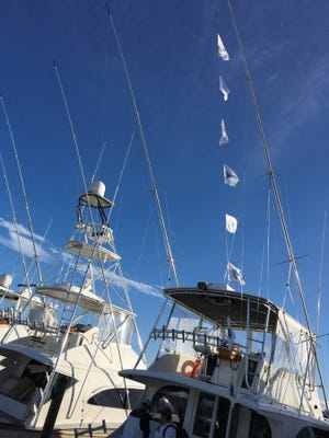Sailfish flags flying from the outriggers of boats mean the sailfish action is heating up. Charter boats like Floridian out of Sailfish Marina in Stuart guide anglers to catches daily. GLENN CAMERON/CONTRIBUTED PHOTO