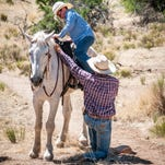 Riders of any experience level can venture into open country with the help of Elkhorn Ranch wranglers.