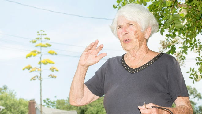 Linda Youd talks about the blooming century plant near her home in Warrington on Tuesday, July 3, 2018.