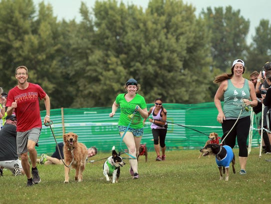 Participants compete in the doggy cross race at the