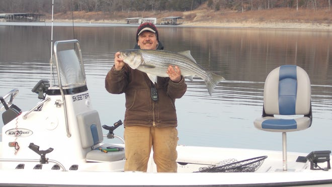 Lou Garbic from Hummingbird Hideaway Resort has been successful using a spoon to catch stripers on Norfork Lake.