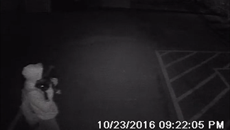 Surveillance video shows the puppies being taken from a shelter in Phoenix on Sunday night.