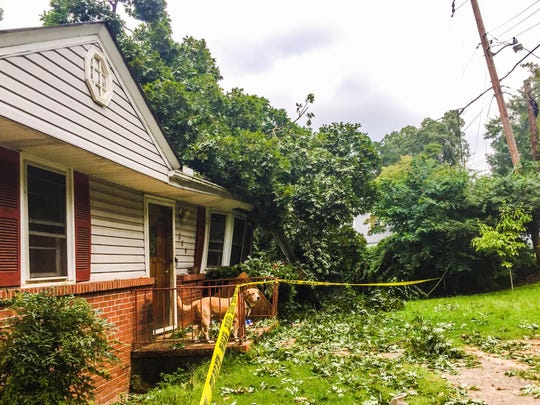 Friday night's storms tossed trees across roadways and onto a home on Webster Road.