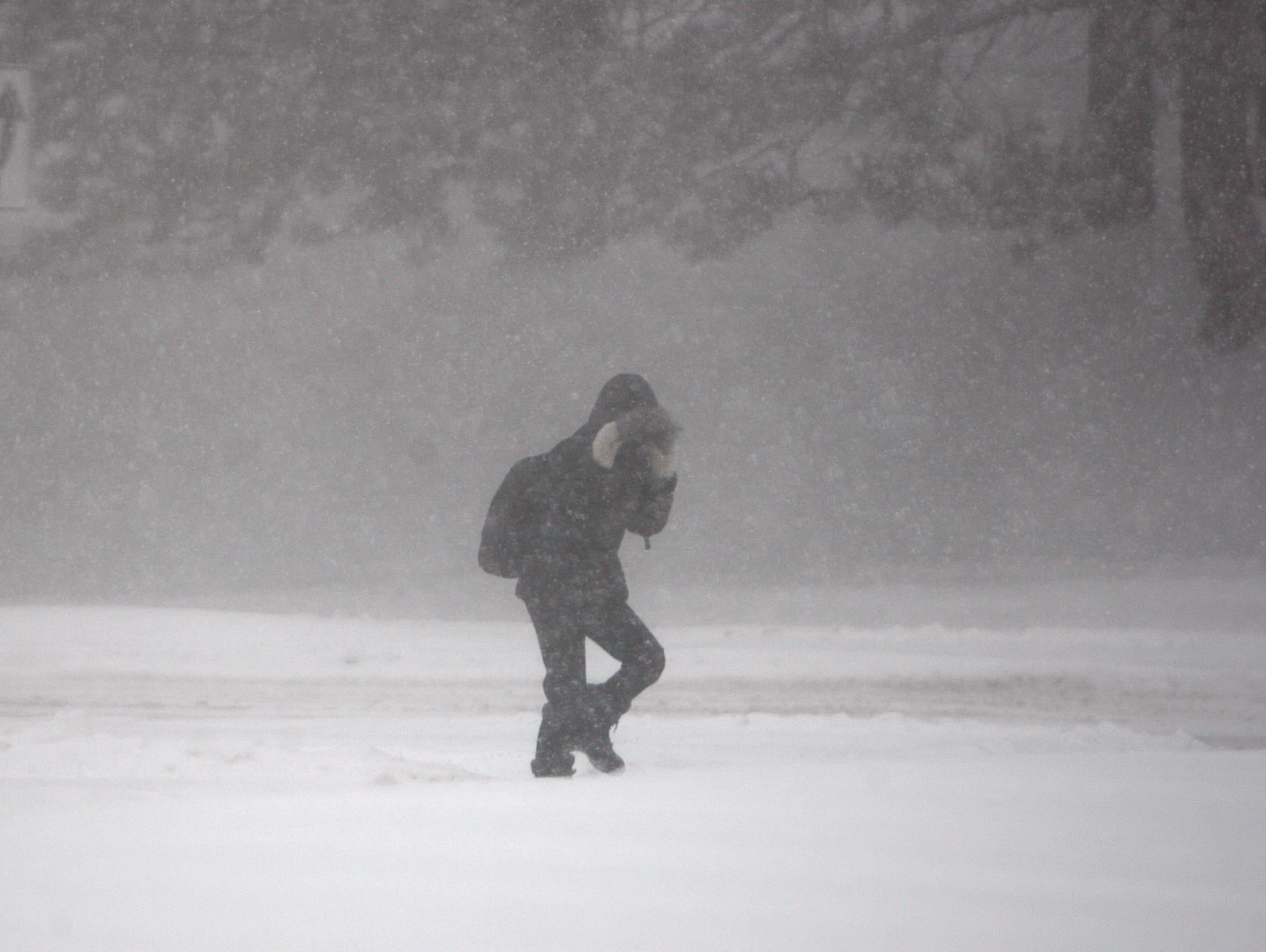 A Pedestrian Braces Against A Gust Of Wind On Elmwood
