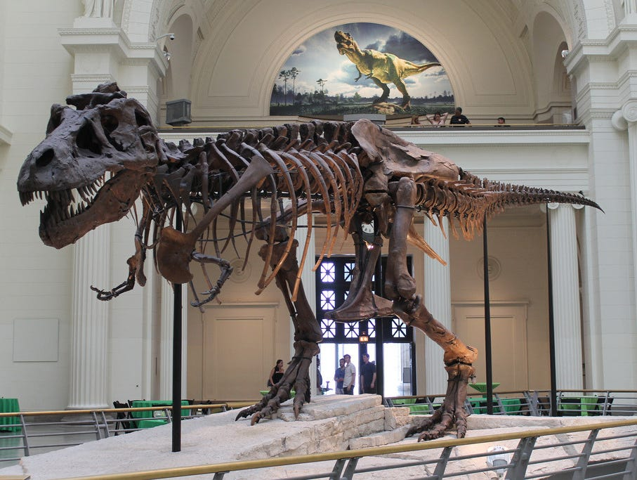 10 Best Places To See Dinosaurs