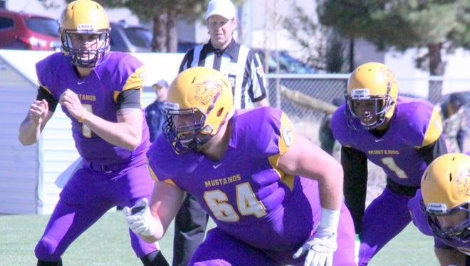 The WNMU football team will enter the Lone Star Conference next season and see some new faces on the gridiron.