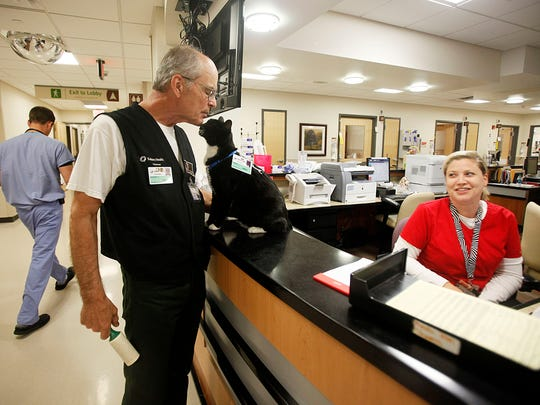 George Piter, gets a nuzzle from his 6-yr-old cat Junior, a certified therapy cat, as they stop to chat with Kari Smith, unit clerk for the Neuro Trauma Care Unit at Salem Hospital Wednesday July 2, 2014. Piter brings in his therapy cats to visit with patients, staff and family of patients.