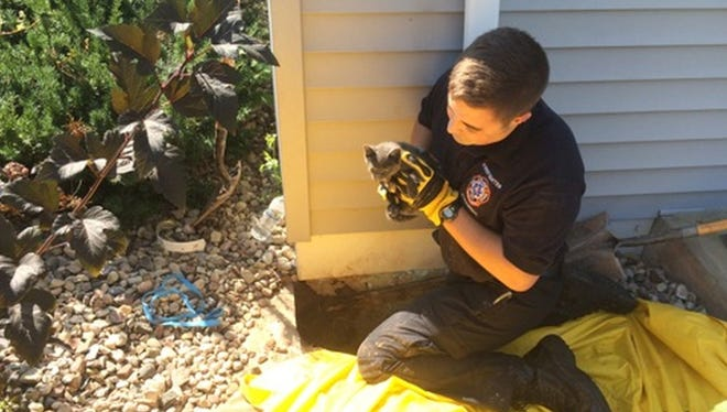 De Pere firefighters rescued a kitten that was trapped in an underground pipe outside a home at 2330 Samantha St. on Tuesday, Sept. 15.