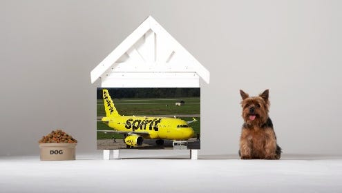 Spirit Airlines is the latest airliner to make headlines. This time, an airline has peeved patrons so much that physical fights are breaking out.