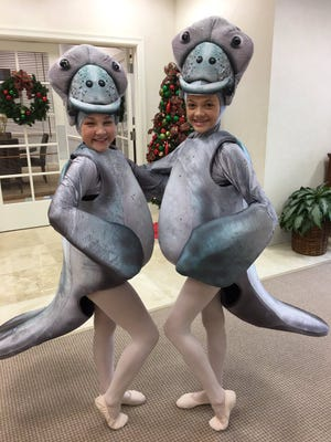 "Ballet Vero Beach's ""Nutcracker on the Indian River"" includes characters such as manatees, dolphins and pelicans. Pictured are two manatees. The ballet company cast 50 young Treasure Coast dancers for the production."