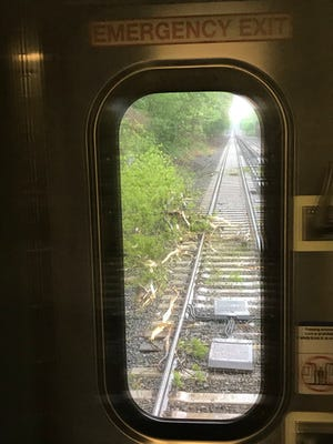A train hit a fallen tree near the Crestwood station.