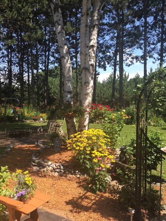636670118391815171-garden.jpg