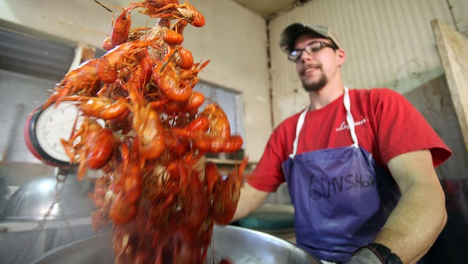 Jamie Stutes tosses an order of freshly boiled crawfish in seasoning Wednesday, February 18, 2015, at Lagneaux's in Lafayette, La.