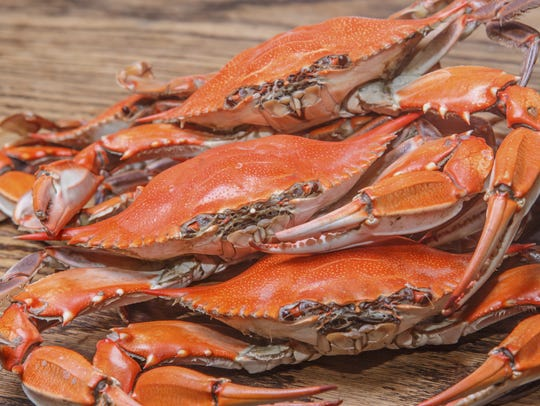 The blue crab turns red when cooked. The meat of the crab is tender, sweet and often used for crab cakes.