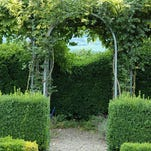 Growing some privacy. An arbor, trellis or pergola with hanging vines is a great way to create some privacy for your backyard.