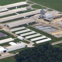 The Wiese Brothers Dairy Farm is shown in 2014 on the east side of the Fox River watershed in Greenleaf. It is one of the largest dairy operations in the state, with about 8,000 cows.
