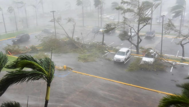 Trees are toppled in a parking lot at Roberto Clemente Coliseum in San Juan during the passage of Hurricane Maria on Sept. 20, 2017.