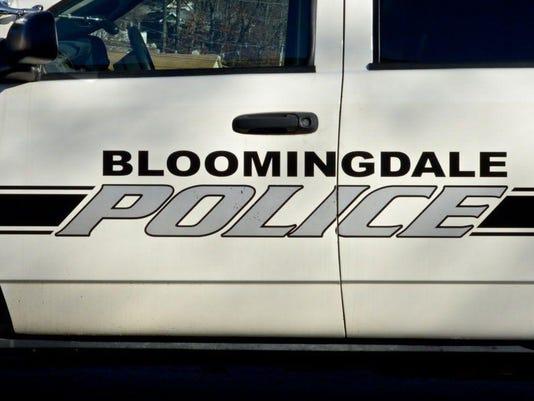 Webkey Bloomingdale police car