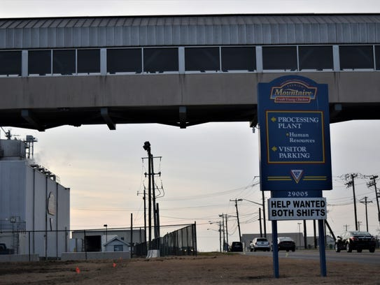 Mountaire Farms is under investigation for potentially
